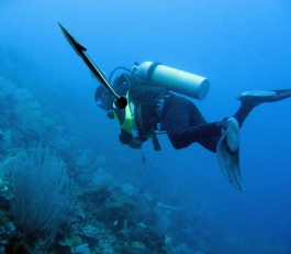 diving_23_g