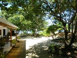 talima garden views 2015 05